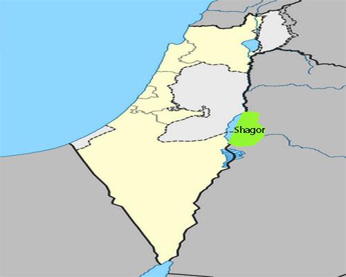 Shagor